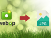 Best 3 ways to convert WEBP to JPG