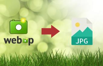 Best 3 ways to convert WEBP to JPG