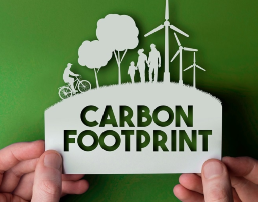 Bamboo Products to Reduce Carbon Footprint